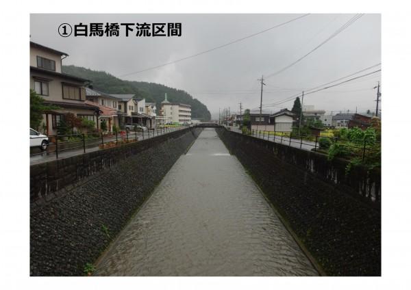20151116苔川の小さな自然再生プラン - コピー-001