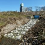 関市千疋の河川側の魚道が完成しました!